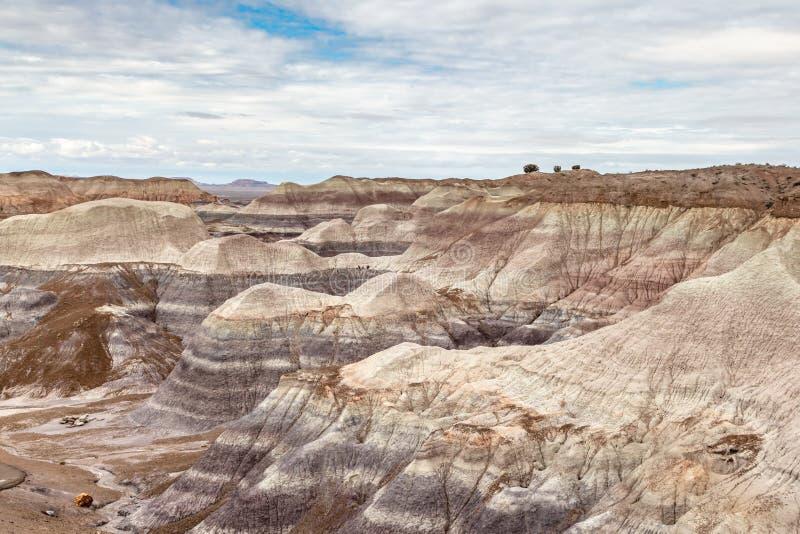 malująca Arizona pustynia obrazy stock