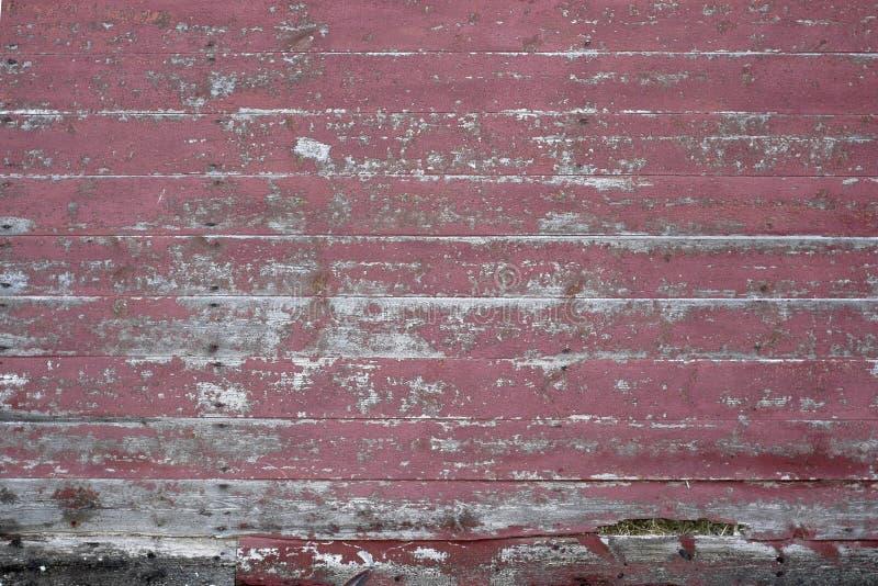 Malująca Drewniana tło tekstura obraz stock