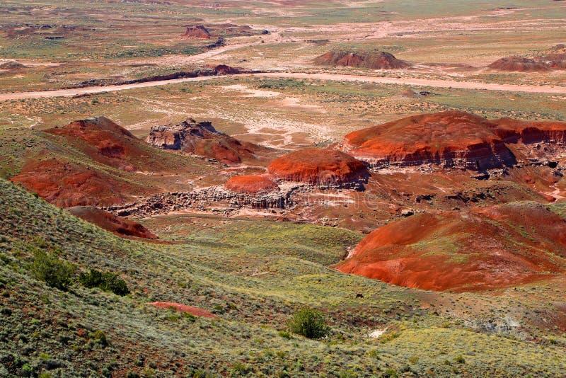 Malująca pustynia obrazy stock