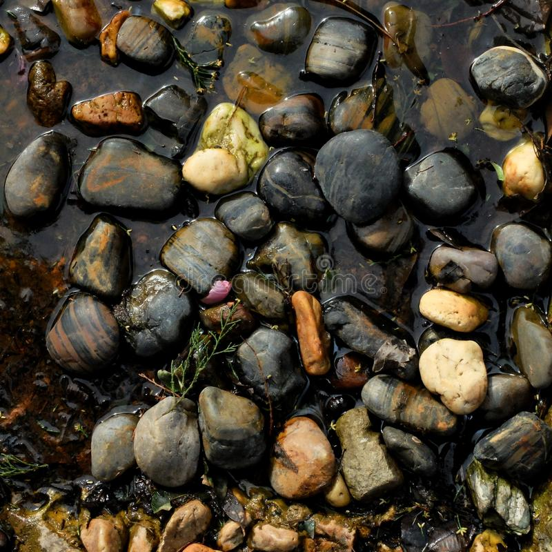 Malutka kamienia żwiru tekstura obraz stock