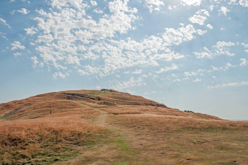 Malvernheuvels in de zomer stock afbeelding