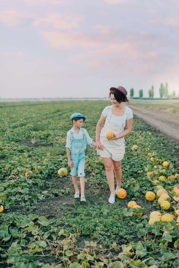 Mamá e hijo en un campo con los melones imagen de archivo