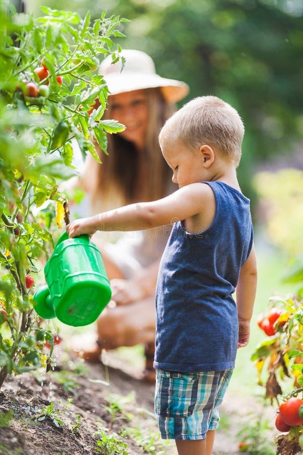 Mamá helphing del niño lindo en el jardín foto de archivo