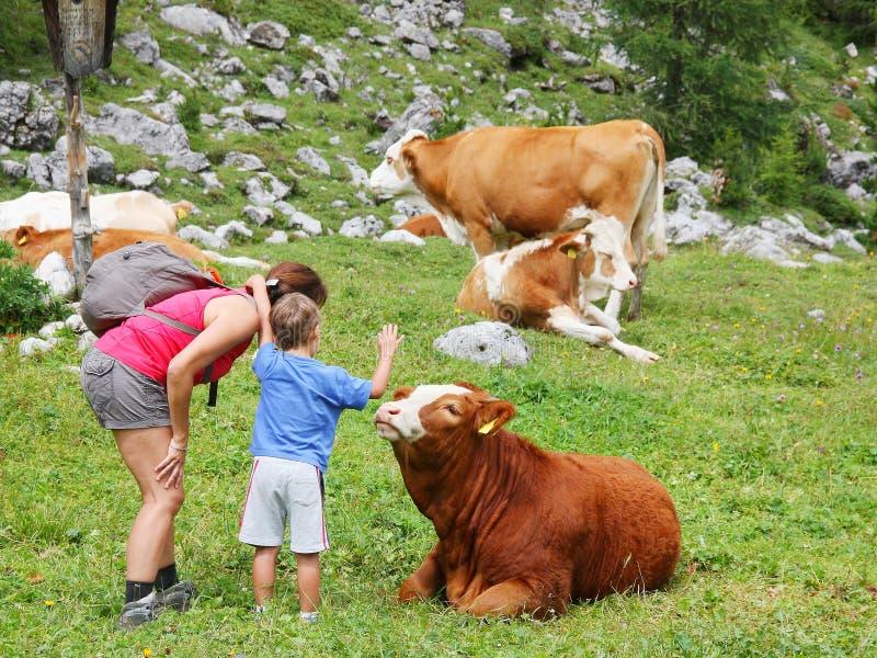 A mamã e a criança apreciam a natureza da montanha na temporada de verão fotos de stock