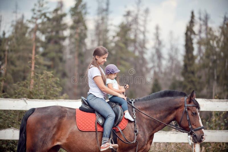 Mamã e criança no cavalo foto de stock royalty free