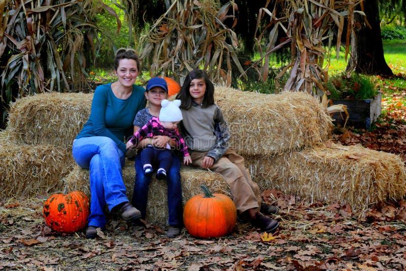Mamã e família no remendo da abóbora imagem de stock