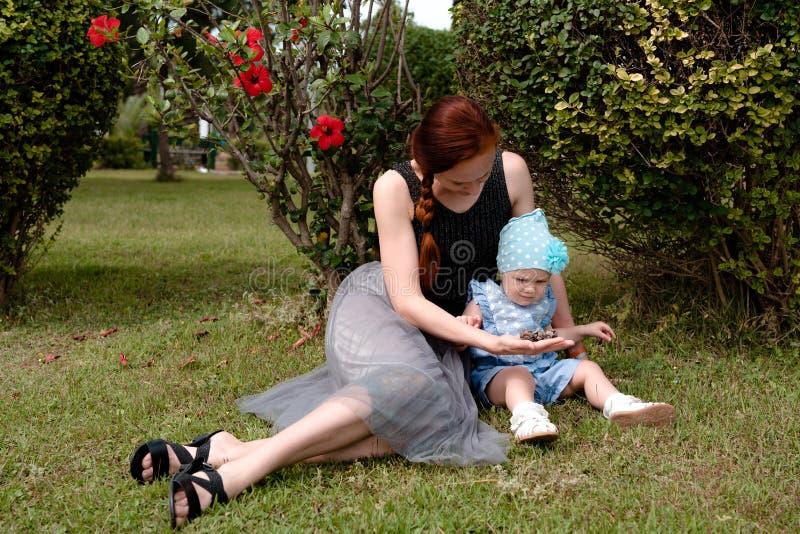 A mamã mostra os cones da árvore da filha que sentam-se no gramado no parque fotos de stock