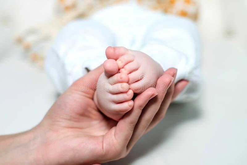 Mamã que guarda os pés do bebê em um fundo branco fotografia de stock