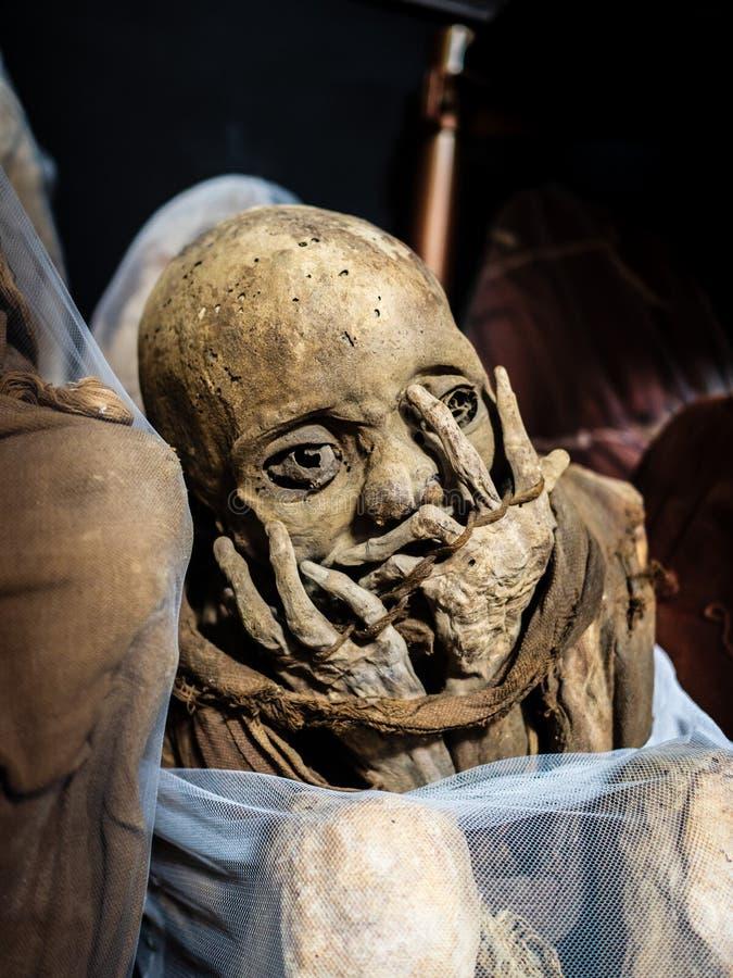 Mamãs de Museo Leymebamba, Peru foto de stock royalty free
