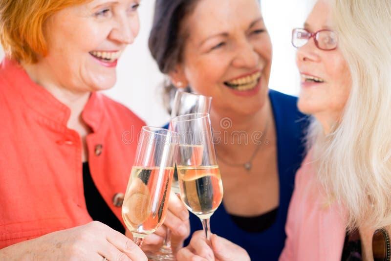 Mamãs felizes que comemoram algo com vinho fotos de stock royalty free
