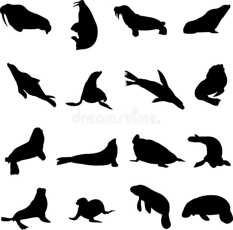 Mamíferos marinos ilustración del vector