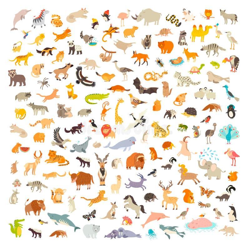 Mam?feros do mundo Estilo dos desenhos animados dos animais, ícone dos mamíferos ilustração stock