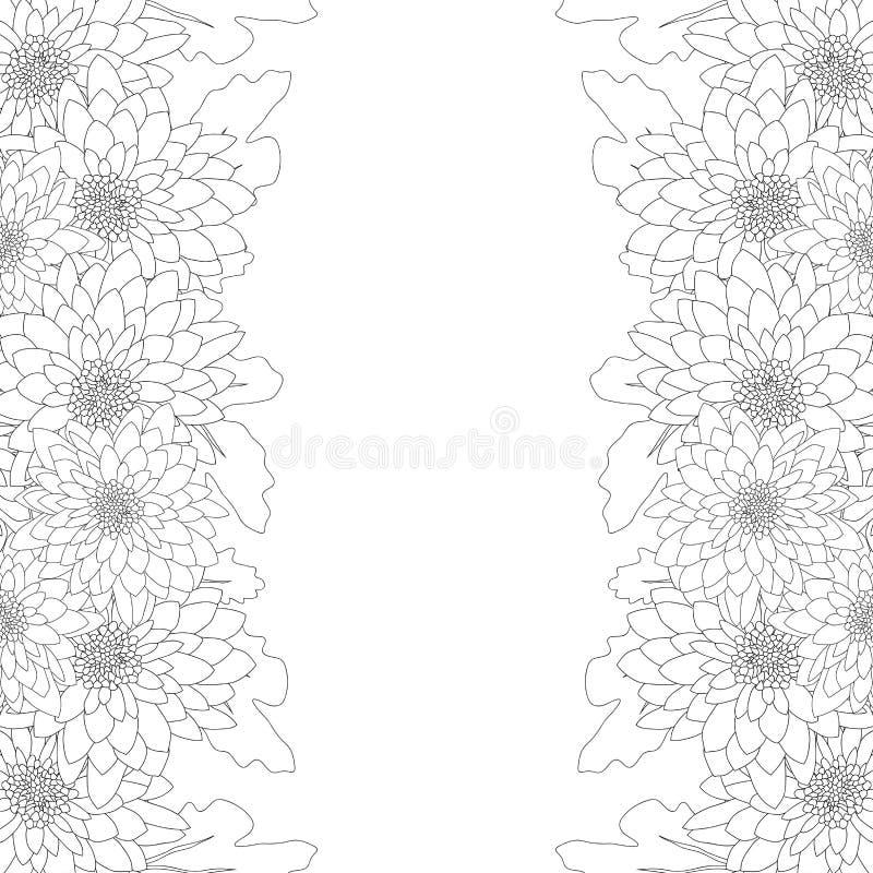 Mama, Chrysanthemen-Blumen-Entwurfs-Grenze lokalisiert auf weißem Hintergrund Auch im corel abgehobenen Betrag vektor abbildung