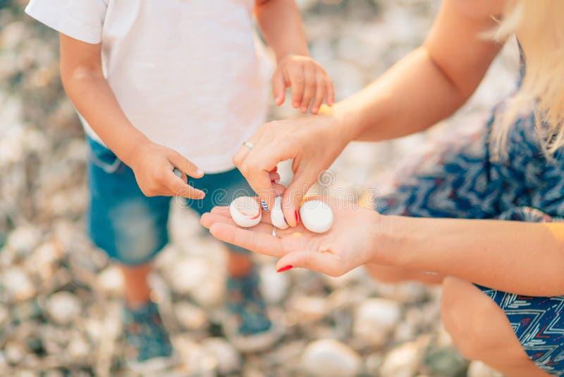Mama i dzieci bawią się denni otoczaki na plaży Gry z chil obrazy royalty free