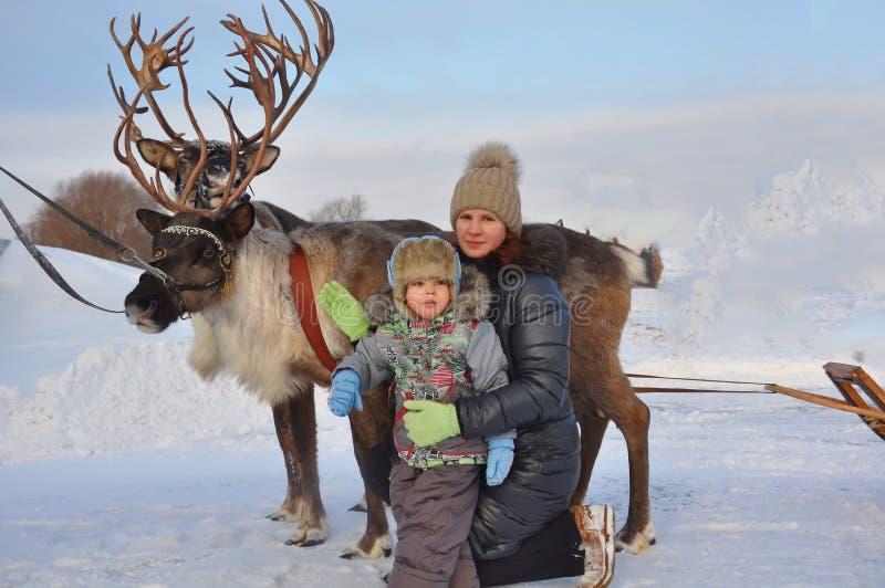 Maman et enfant autour avec le traîneau de cerfs communs photo stock
