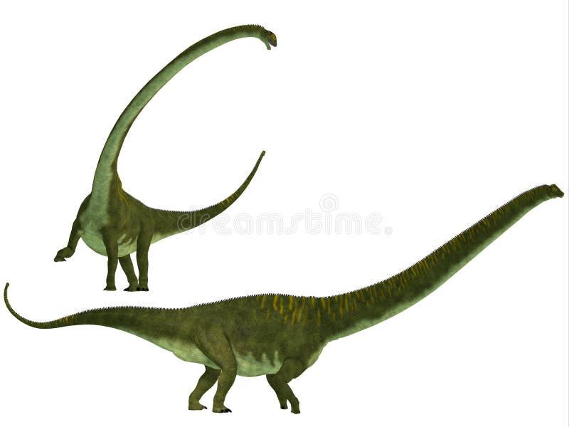 Mamenchisaurus hochuanensis royalty ilustracja