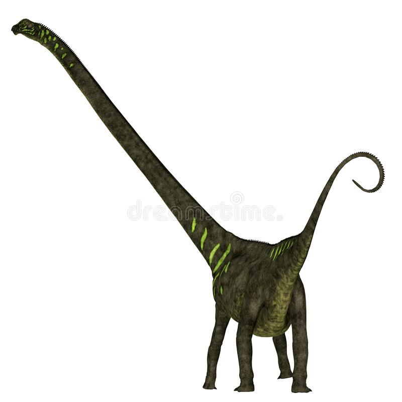 Mamenchisaurus youngi dinosaura ogon ilustracja wektor