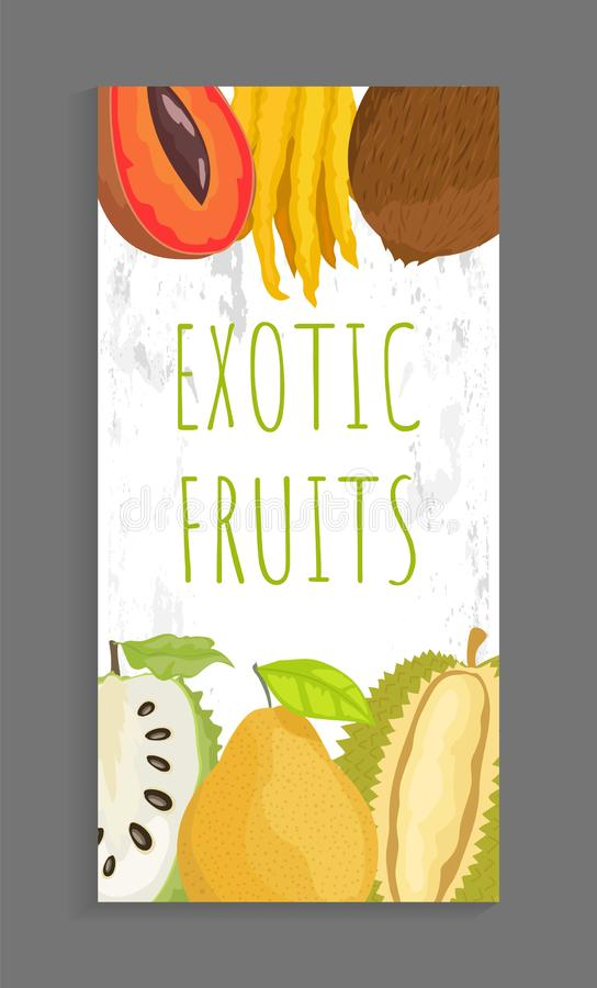 Mamey Citron, Coconut Sugar Apple, Pomelo Brochure. Mamey and citron, coconut and sugar apple, pomelo and durian whole and cut tropical fruits on vector leaflet royalty free illustration
