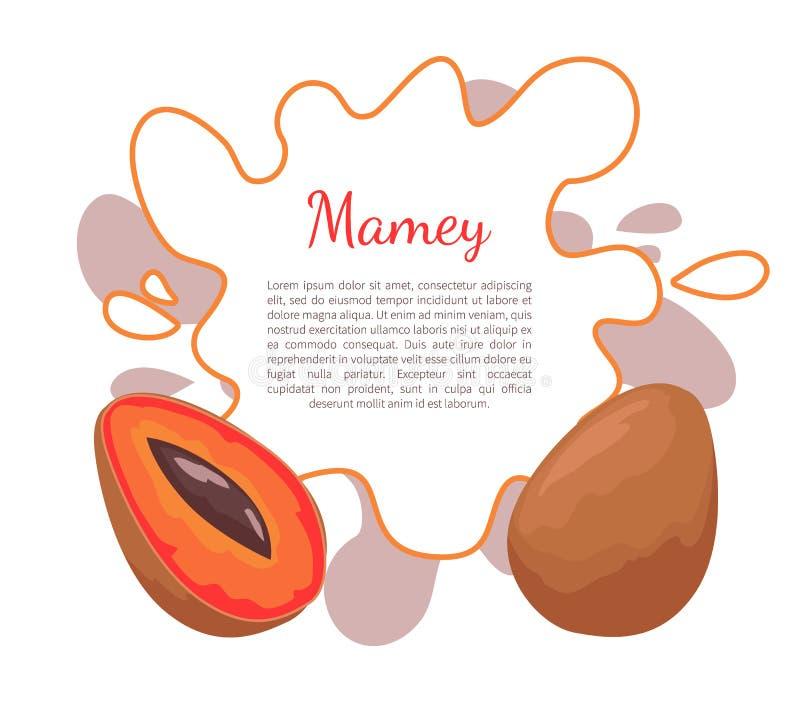 Mamey plakata ramy Egzotyczny Soczysty Owocowy Wektorowy tekst ilustracja wektor
