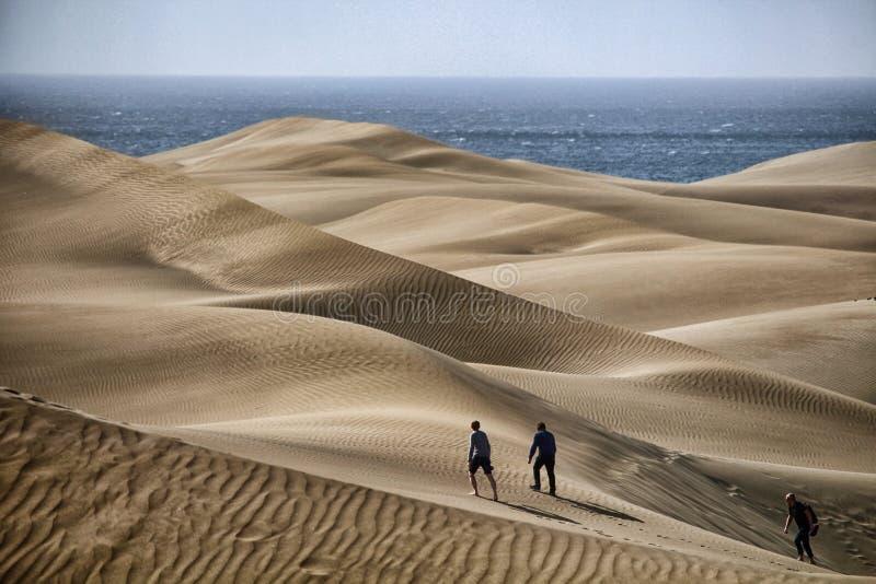 Mamie Canaria Maspalomas Sahara Desert Sand Dunes images libres de droits