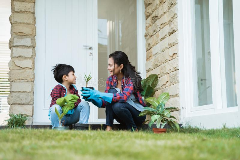 Mamma e figlio che piantano nuova pianta Attività di giardinaggio immagini stock libere da diritti