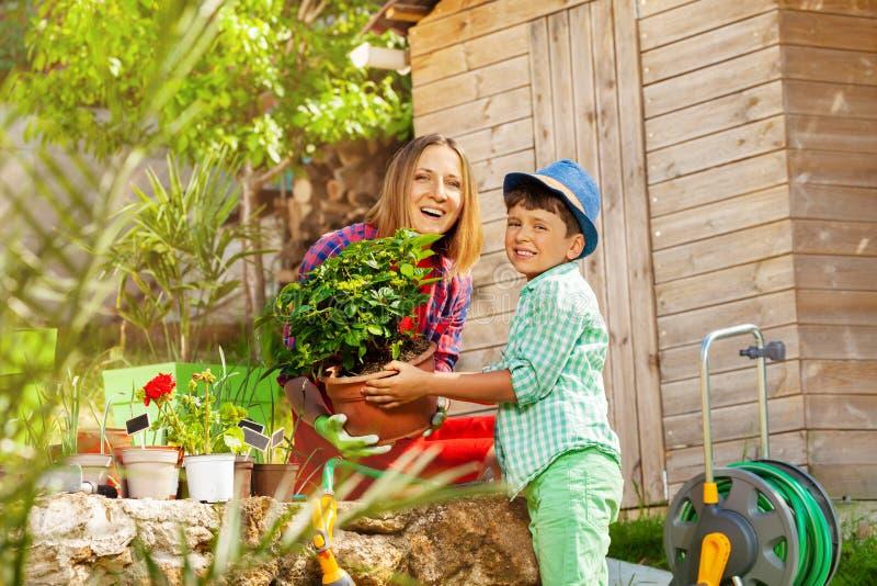 Mamma en haar zoon die bloemen in de binnenplaats planten stock afbeelding