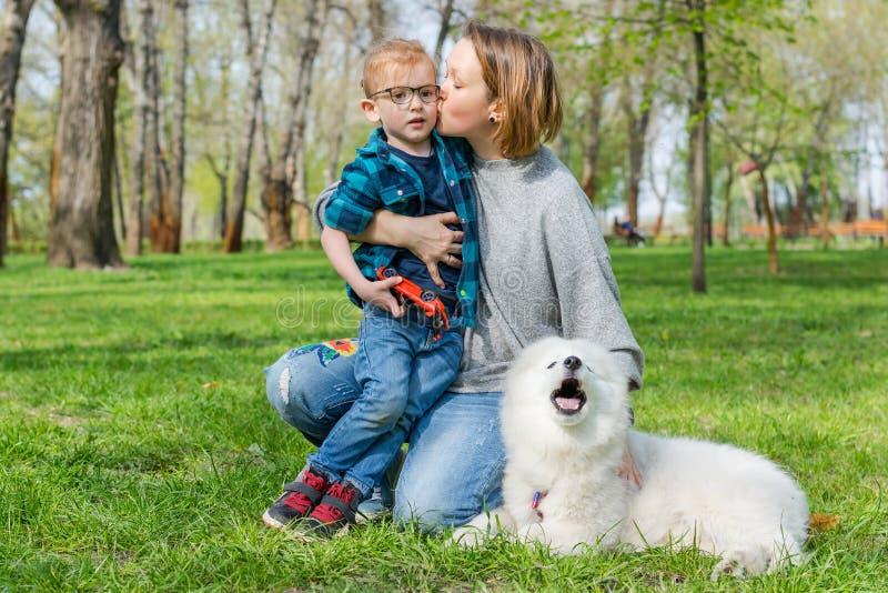 Mamma en haar zoon met een pluizige Samoyed-hond in een park in de lente stock foto's