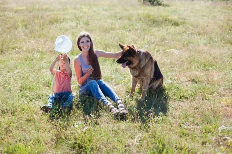 Mamma en zoons het spelen met hondherdershond opleiding stock afbeelding
