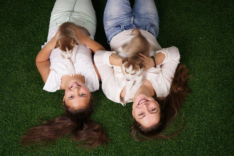 Mamma graziosa e figlia allegra che giocano con due cuccioli del husky sull'erba immagine stock