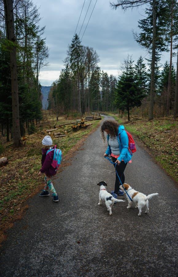 Mamma med en dotter och en hund på en skogbana, vandring i bergen royaltyfri fotografi