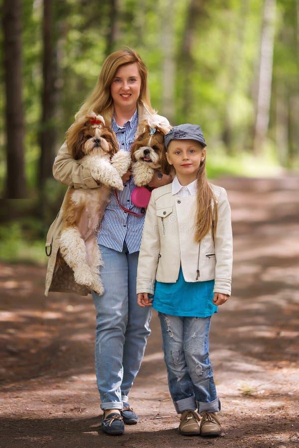 Mamma och dotter som går i parkera med den samma två Shih Tzu hundkapplöpningen royaltyfria bilder
