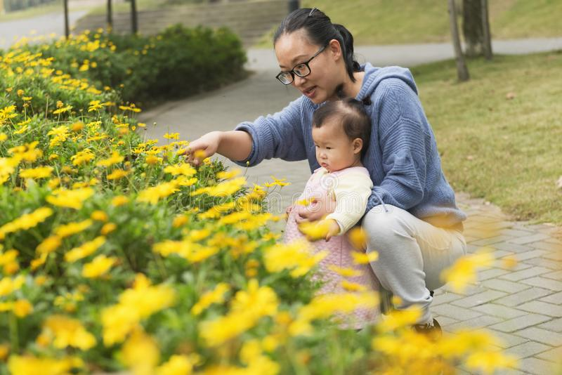 Mamman f?rklarar blomman f?r liten dotter fotografering för bildbyråer