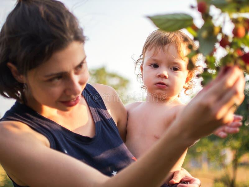 Mamman visar växande bär till hennes barn Kvinnan rymmer hennes dotter i hennes armar arkivfoton