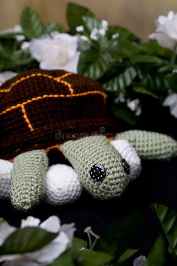 Mammasköldpadda med ägg royaltyfri bild