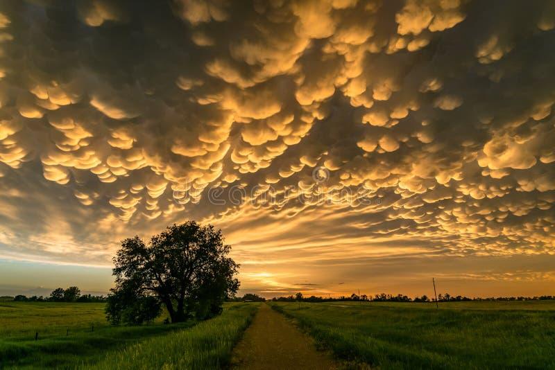 Mammatus sopra il Nebraska Nord-centrale fotografia stock libera da diritti