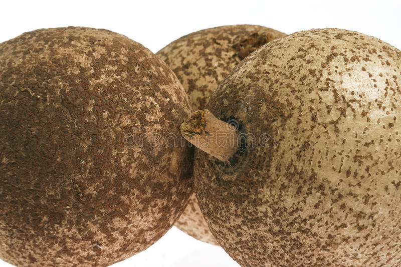 Mammee jabłko (Mammea americana) fotografia stock