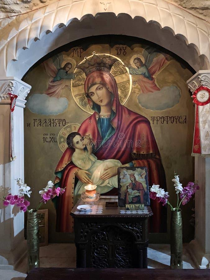 Mammifero - Icona della Madre di Dio immagini stock