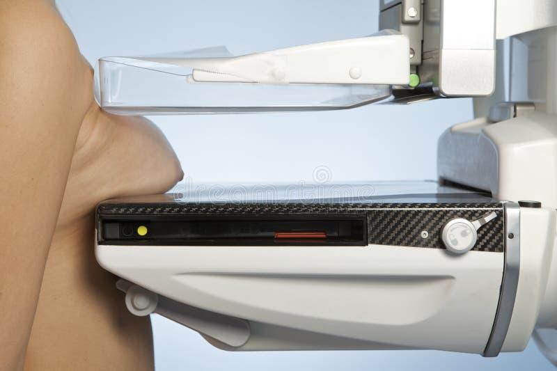 mammografia bierze kobiet potomstwa obrazy royalty free