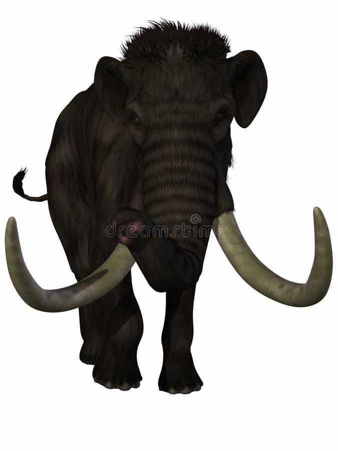 Download Mammoth stock illustration. Image of creature, extinct - 14198521