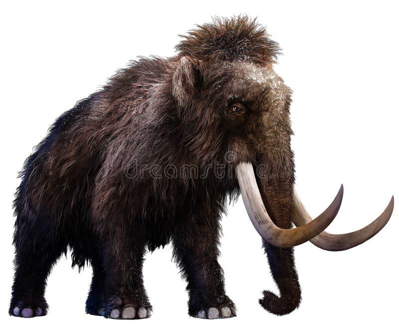 mammoth ilustração do vetor