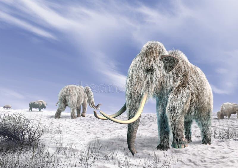 Mammoth dois em um campo coberto da neve. ilustração do vetor