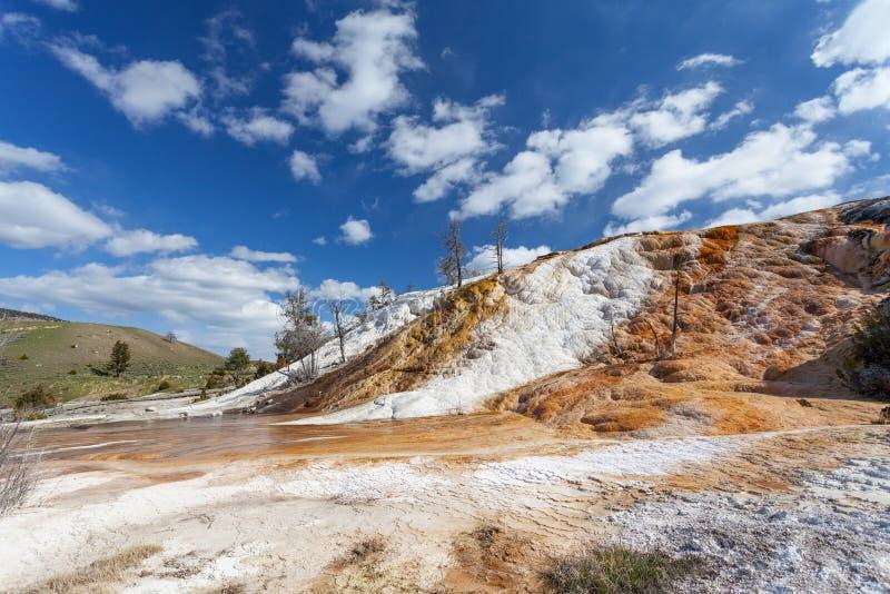 Mammoth Hot Springs, Йеллоустон, Вайоминг, США стоковые фото