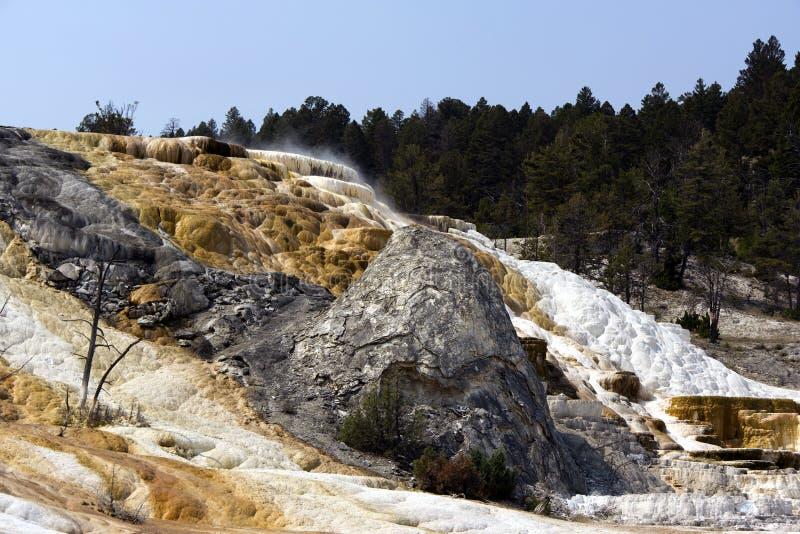 Mammoth Hot Springs imagenes de archivo