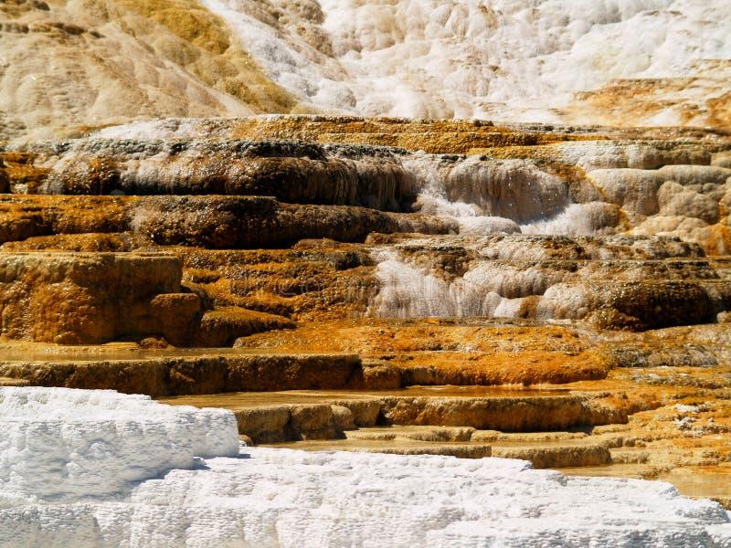 Mammoth Hot Springs 库存图片