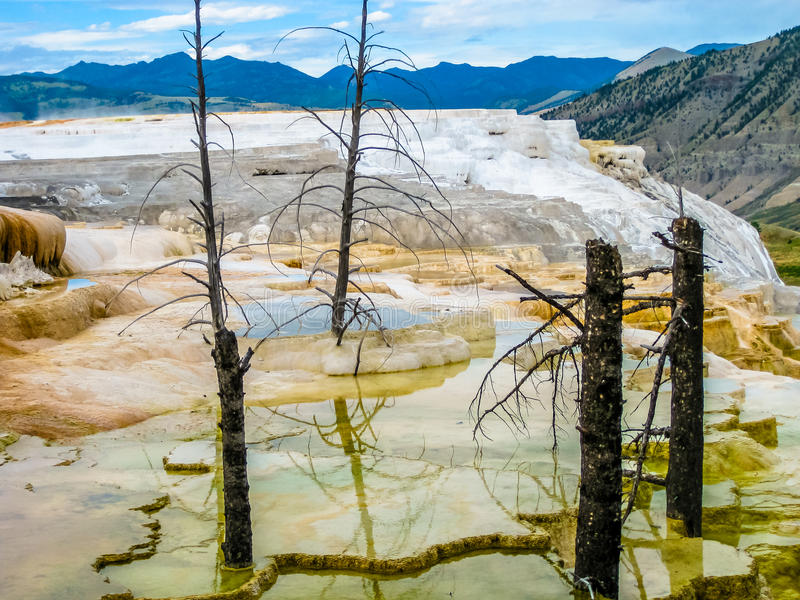 Mammoth Hot Springs fotografia de stock royalty free