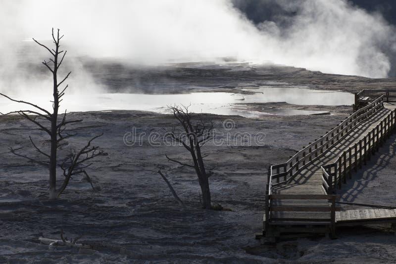 Download Mammoth Hot Springs 库存照片. 图片 包括有 黄石, 破火山口, 声势浩大, 春天, 公园 - 72357386