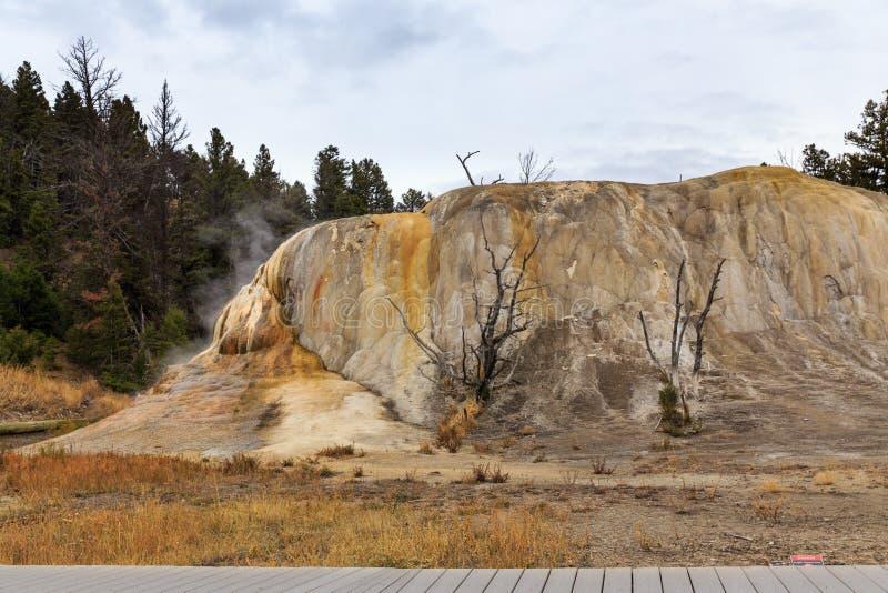 Mammoth Hot Springs imagen de archivo