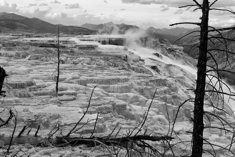 Mammoth Hot Springs en stationnement national de Yellowstone photo libre de droits