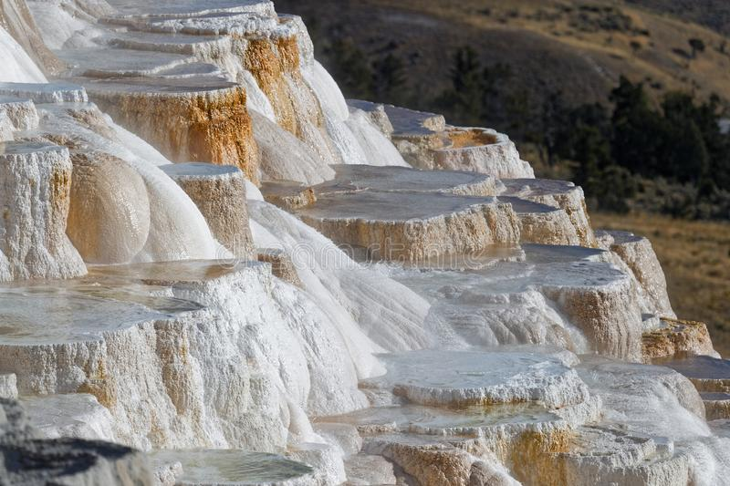 Stairs at Mammoth Hot Springs. Mammoth Hot Springs is a large complex of hot springs on a hill of travertine in Yellowstone National Park royalty free stock images