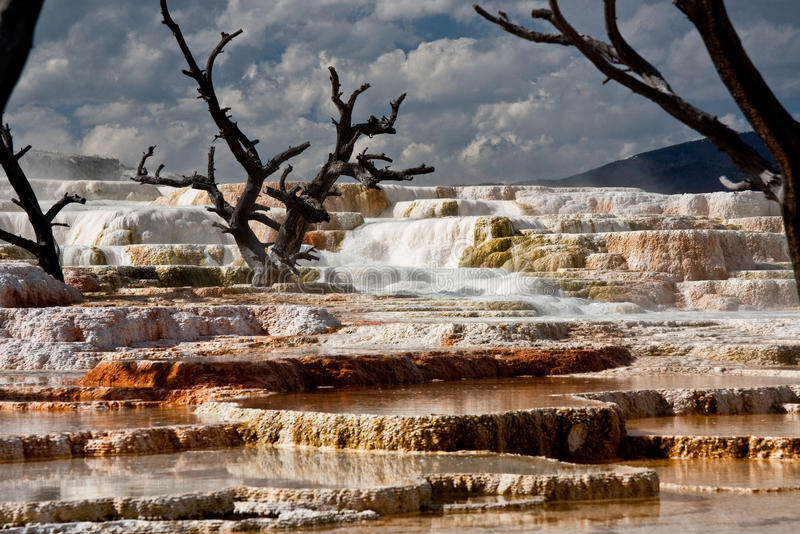 Mammoth Hot Springs no parque nacional 2 de Yellowstone foto de stock